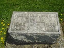 Algenia Bole