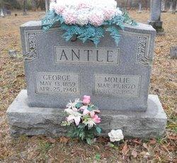Mary Jane Mollie <i>McFarland</i> Antle