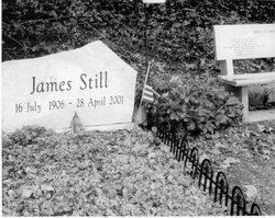 James Alexander Still, Jr