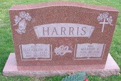 Elizabeth Anne <i>Williams</i> Harris