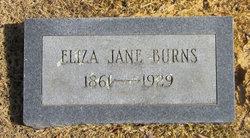 Eliza Jane Burns
