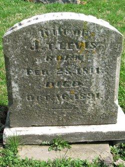 Harriet <i>Whitehead</i> Levis