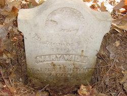 Mary Will Irwin