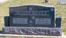 Bruce D. Buddemeyer