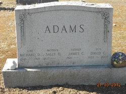 Sally <i>Dorn</i> Adams