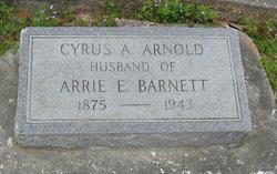 Cyrus A Arnold
