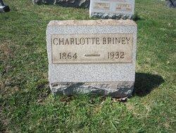 Charlotte C. <i>Chambers</i> Briney