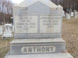 Eliza J Anthony