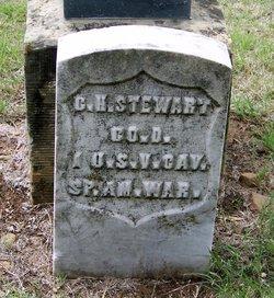 Clare H Stewart