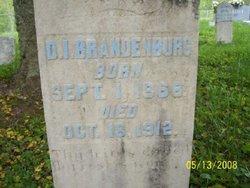 Derias Isaac Rice Brandenburg