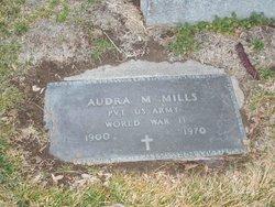 Audra McKinley Mills