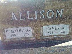 James A Allison