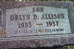 Orlyn D Allison