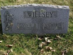 Mrs Hannah <i>Fort</i> (Knapp) Willsey