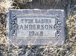 Twin Babies Anderson