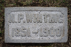 Nelson P Whiting