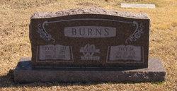 Crystal Lee <i>Jones</i> Burns