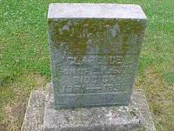 Clarence L. Biddick