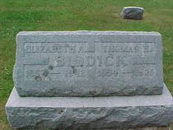 Thomas Henry Biddick