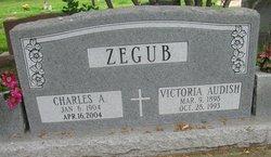 Charles A. Zegub