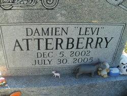Damien Levi Atterberry