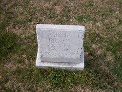 Amelia Ernst