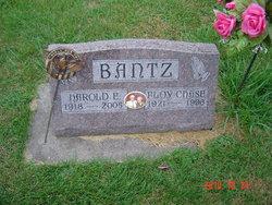 Harold Edward Bantz