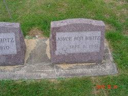 Joyce Ann Bantz