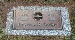 America R Bridges