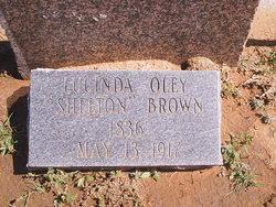 Lucinda Oley <i>Shelton</i> Brown