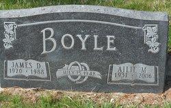 Ailie M. <i>Panula</i> Boyle