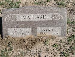 Sarah J. <i>Brittain</i> Mallard
