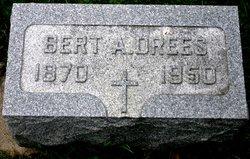 Bert A Drees