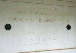 Annie Linville <i>Black</i> Johnson