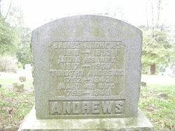 Timothy ANDREWS