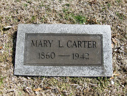 Mary L Carter