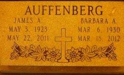 Barbara Anne <i>Coppedge</i> Auffenberg
