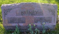 Irene Salina <i>Grant</i> Briney