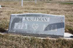 Daniel R Kauffman