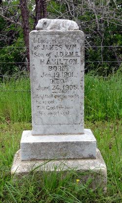 James William Hamilton