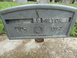 Albert Wilson Hamilton