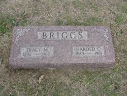 Harold C Briggs