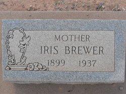 Iris <i>Thill</i> Brewer