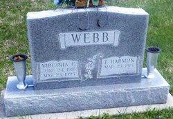Thomas Harmon Webb
