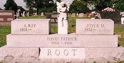 David Patrick Root
