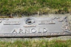 Bernice E <i>Nelson</i> Arnold