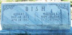 Robert L. Bish