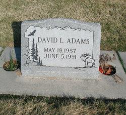 David Lee Adams