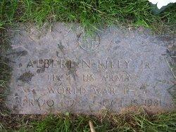 Albert Nelson Lilly, Jr