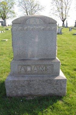 Robert B Adams
